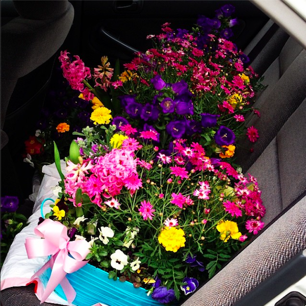 2014 Dutch Garden Delivery to Senior Living Care Facilities